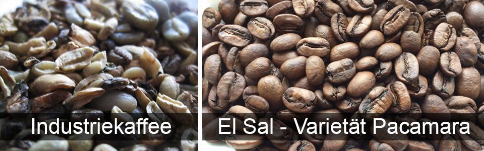 Industriekaffee - Woran man guten Kaffee erkennt