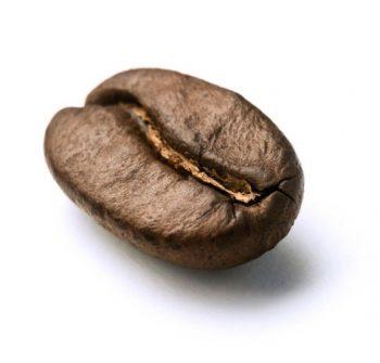 Kaffee & Abos